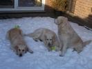 Damen im Schnee