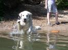 Wasser-Training 14.07.10